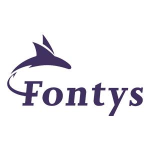 PartnerPagina_Fontys
